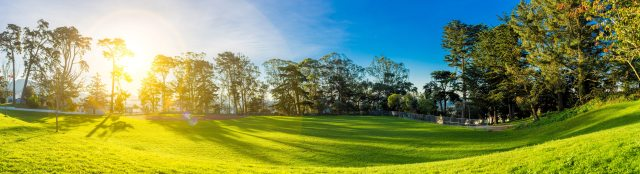 bright-day-environment-356977