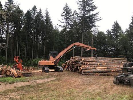 logging-log-picker