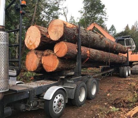 logs-loaded-narrow
